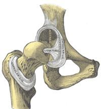 Ejercicio para la cadera