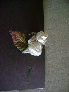 Tarjetas color café con rosas blancas